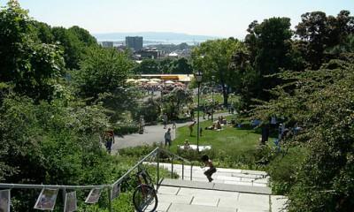 St. Hanshaugen park er en populær grønn lunge midt i Oslo.